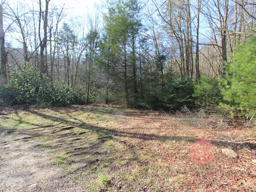 Large Acreage Tract Located Grayson : Troutdale : Grayson County : Virginia