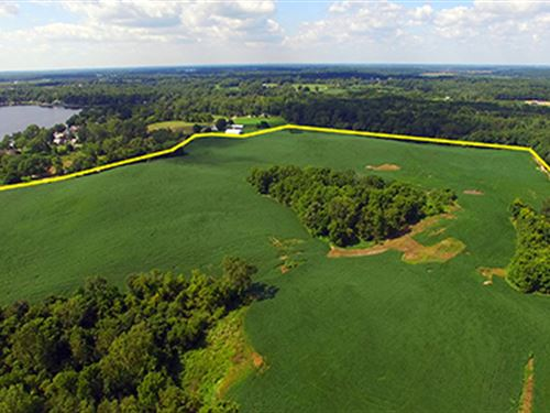Land Auction, 164+/- Ac, 7 Tracts : Hudson : Lagrange County : Indiana