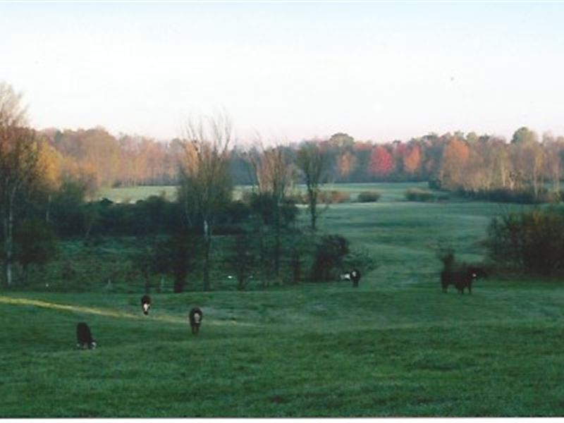 Organic Farm With Pond And Views : Ranch for Sale by Owner