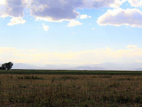 Windsor Lot 30 Acres : Windsor : Weld County : Colorado