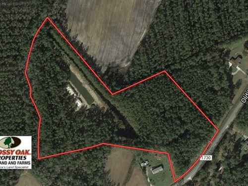 Under Contract, 16 Acres of Hunti : Hallsboro : Columbus County : North Carolina