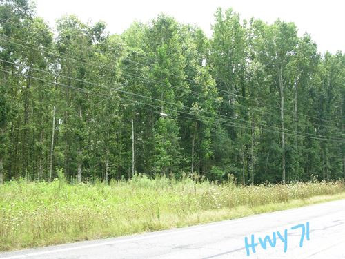 Timberland Auction 403 Acres 12 : Dutton : Jackson County : Alabama