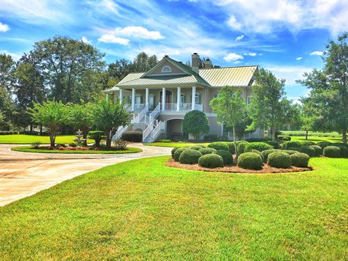 Price Reduced Cricket Hill Farms : Twin City : Bulloch County : Georgia