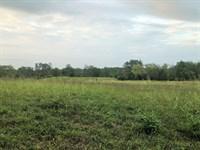 Coldwater Creek Farm : Elberton : Elbert County : Georgia