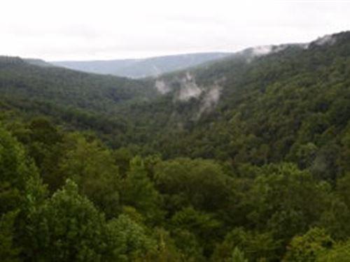 Hunting Land Adjoining Wma : Scottsboro : Jackson County : Alabama