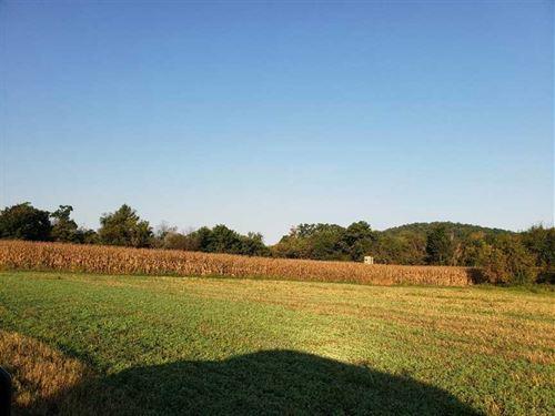 Buffalo County Alma Farm : Alma : Buffalo County : Wisconsin