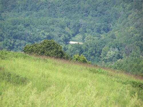 Land Pasture, Spring, Creek, Ponds : Marshall : Searcy County : Arkansas