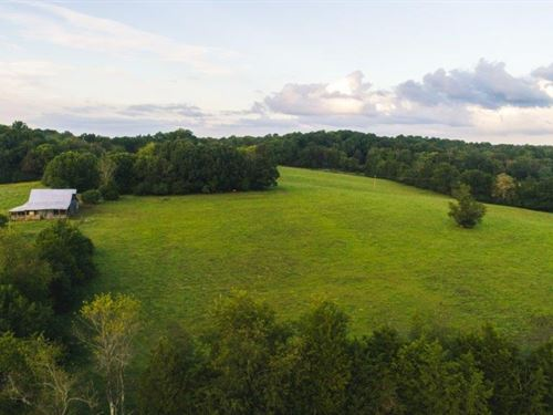 Large Acreage Farm Auction : Appomattox : Virginia