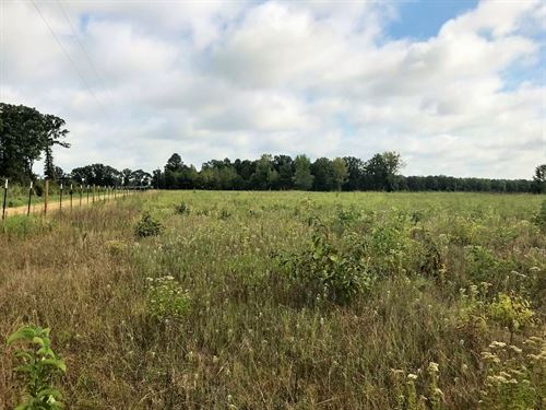 76 Acres In Dalby Springs : De Kalb : Bowie County : Texas