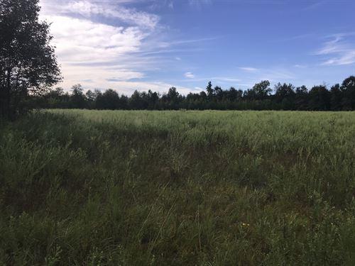 Richardson Creek : Miller : Jenkins County : Georgia