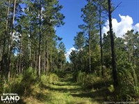 Lexington Get-Away & Hunting Tract : Lexington : Holmes County : Mississippi