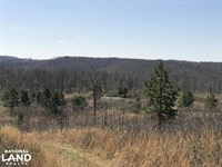 156 Acres Deer & Turkey Hunting : Rupert : Van Buren County : Arkansas