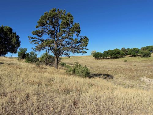 Development Land, RV Park Property : Dolores : Montezuma County : Colorado