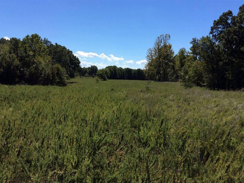 385 Acres For Hunting : Locust Grove : Mayes County : Oklahoma