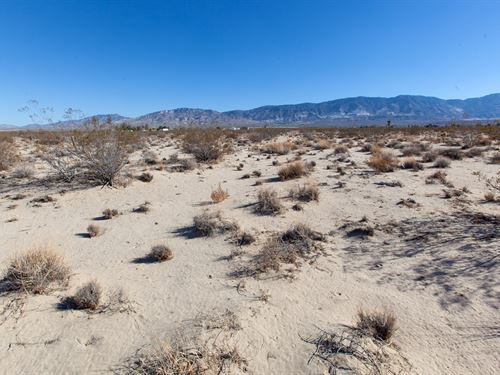 10 Acres Hi Desert Lucerne Parcel : Lucerne Valley : San Bernardino County : California