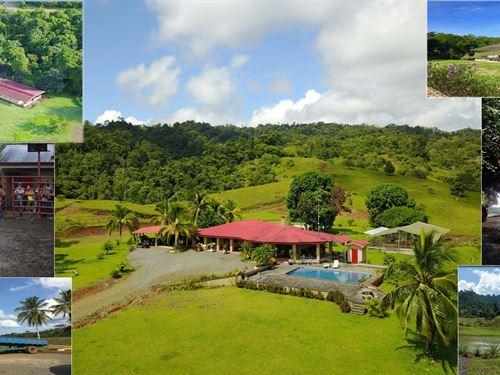 Ocean View Farm For Sale Costa Rica : Siquirres : Costa Rica