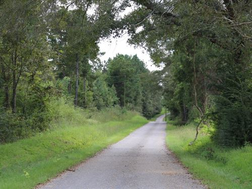 18 Acres In Jones County In Soso : Soso : Jones County : Mississippi