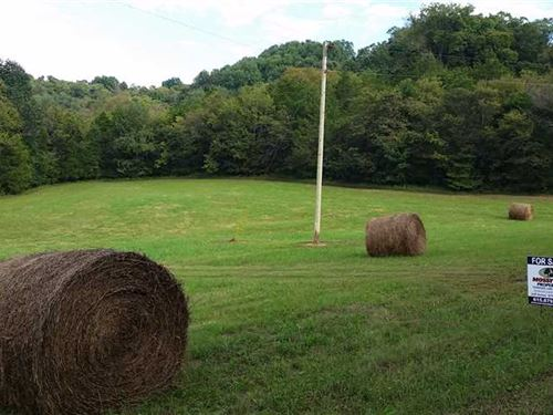 106 Acres, Bell Buckle Tennessee : Bell Buckle : Bedford County : Tennessee