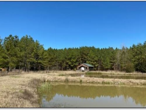 445.8 Acres In Holmes County In Lex : Lexington : Holmes County : Mississippi