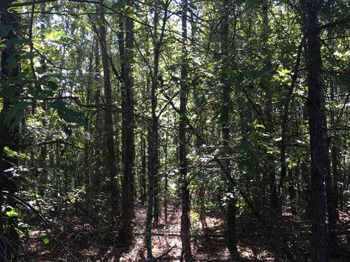 Yancey, North Tract : Toomsboro : Wilkinson County : Georgia