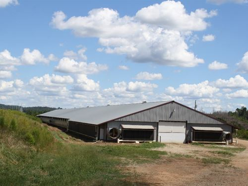Poultry Farm, 2 Mega Houses & 15 Ac : Woodland : Randolph County : Alabama