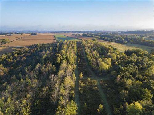 78 Acres Mol For Sale Near Mayvill : Mayville : Dodge County : Wisconsin