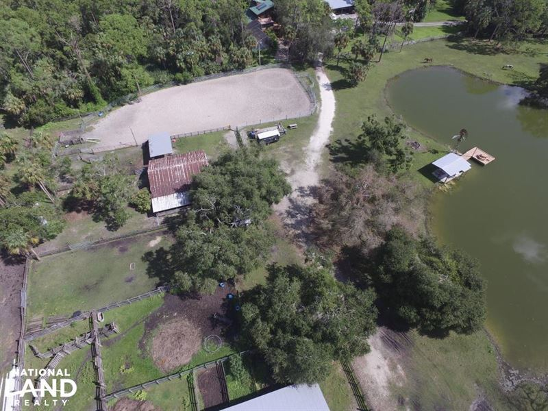 Crazy T Ranch Equestrian Paradise : Buckingham : Lee County : Florida