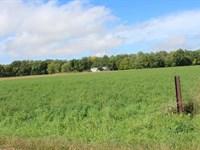 Real Estate Auction In Oswego, In : Oswego : Kosciusko County : Indiana