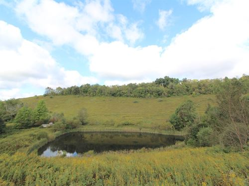 Guernsey Valley Rd, 109 Acres : Kimbolton : Guernsey County : Ohio