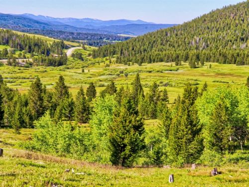 161 Acres in Anaconda, Montana : Anaconda : Deer Lodge County : Montana