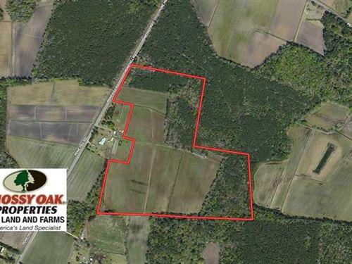 47 Acres of Farm And Hunting Land : Hallsboro : Columbus County : North Carolina