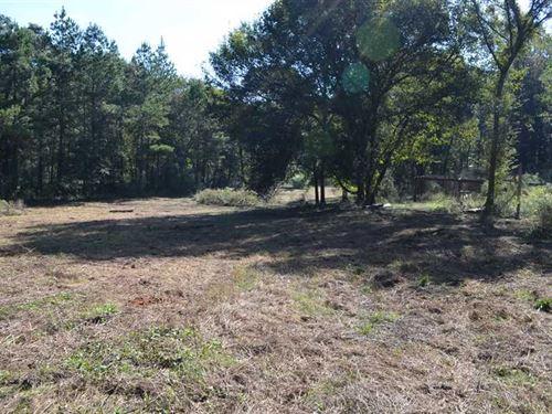 Affordable Hunting Property : Autaugaville : Autauga County : Alabama