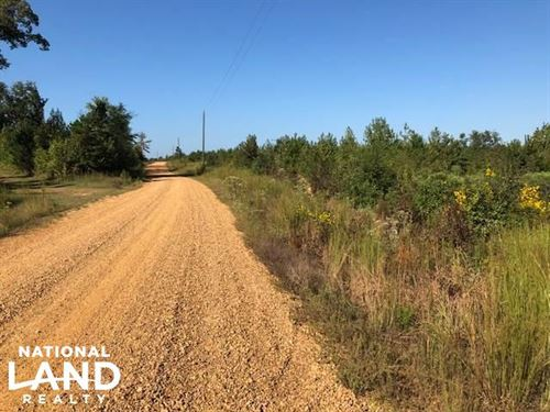 20 ac Hunting Property Choctaw Coun : Weir : Choctaw County : Mississippi