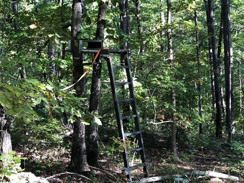 30 Acres Hunting/Recreational Land : Leslie : Stone County : Arkansas