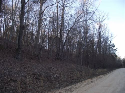 Tn Wooded Land, Great Hunting : Savannah : Hardin County : Tennessee