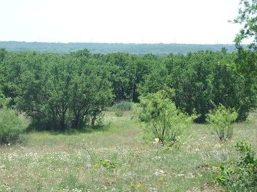 150+/- Acres In Eastland County : Cisco : Eastland County : Texas