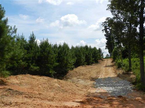 114 Acres, Walker Road Road, Way : Lutts : Wayne County : Tennessee