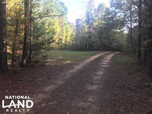 Recreational And Potential Homesite : Holly Springs : Marshall County : Mississippi