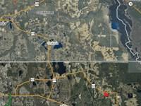 East Orange County Land & Homesite : Christmas : Orange County : Florida