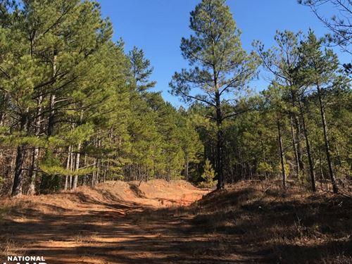 Falkner Timber And Recreational Tra : Falkner : Benton County : Mississippi