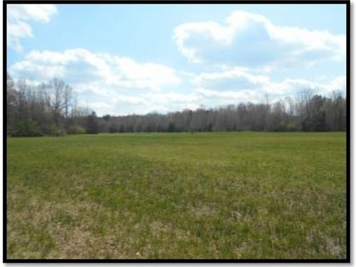 80 Acres In Panola County, Ms : Sardis : Panola County : Mississippi