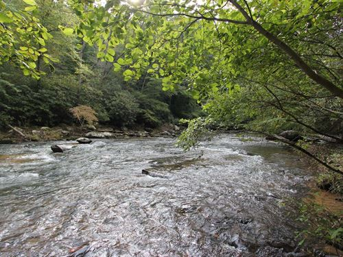 1271 Ft, of Frontage on Elk Creek : Fries : Grayson County : Virginia