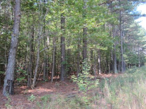 50.60 Acres In Tishomingo County In : Iuka : Tishomingo County : Mississippi