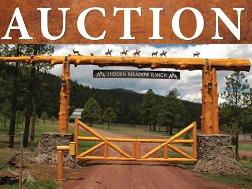 Bulk Sale Auction 9 Premium : Greer : Apache County : Arizona