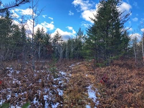80 Acres Ford Rd Mls 1111599 : Big Bay : Marquette County : Michigan