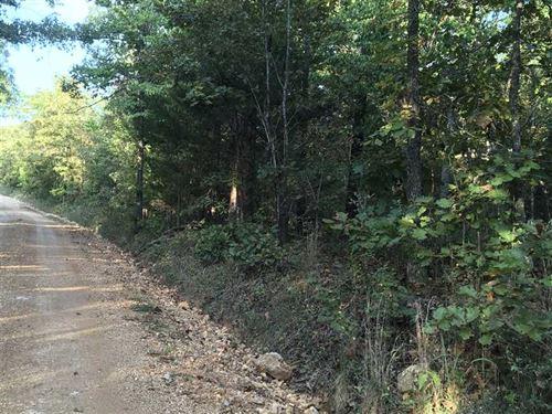 30 Acres, Deer And Turkey Hunt : Mammoth Spring : Fulton County : Arkansas
