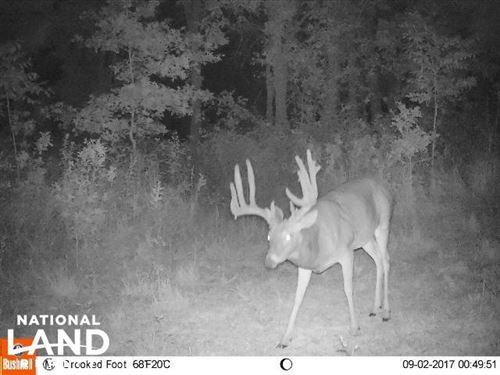 Crooked Creek Hunting Tract With In : Leroy : Coffey County : Kansas