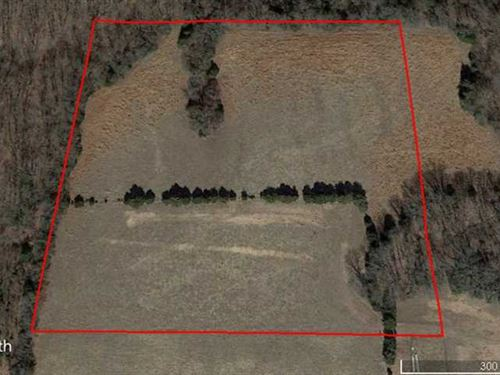 10 Acre Tract in Highlandville, Mi : Highlandville : Christian County : Missouri