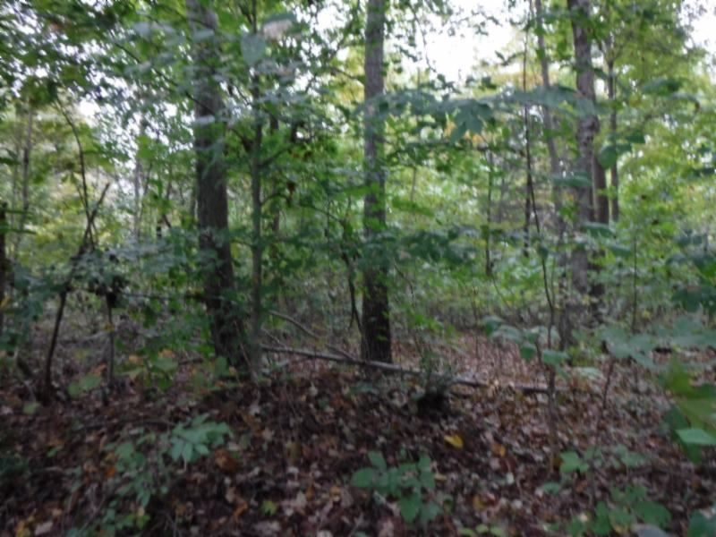 24 Ac, Creek, Hunting, No Restrict : Whitleyville : Jackson County : Tennessee
