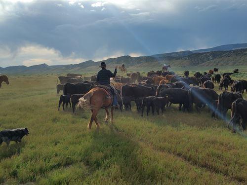 Red Wash Ranch : Dinosaur : Moffat County : Colorado